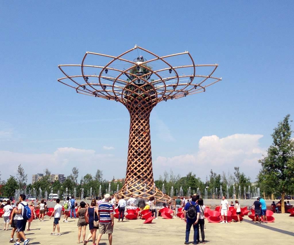 Strom života v centru EXPA