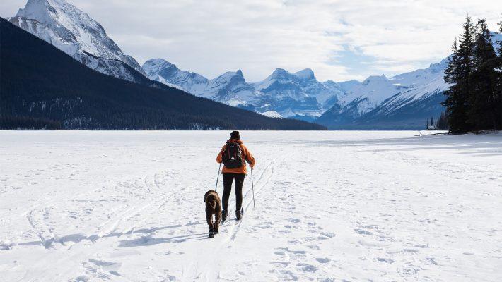 Buďte připraveni na horskou dovolenou se psem
